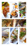 Fishes and sea food Stock Photos