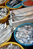 Fishes and seafood business. Kinds of fish and seafood selling in market, shown as different, various and market business dealing Stock Images