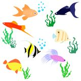 The fishes set Stock Photography