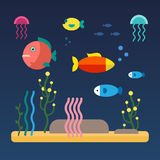 Fishes swimming at the sea bottom. Fishes swimming at the bottom of the sea. Flat style vector illustration  on blue background Stock Image