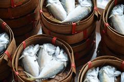 Fishes in thai market. Fresh fishes in baskets in thai street market Royalty Free Stock Images