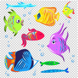 Fishes vector collection decorative style set isolated. Seamless Sea travel icon set, underwater diving animal - tropical fish. Vector illustration abstract Royalty Free Stock Image