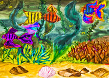 Fishes in water, watercolor. Hand painted picture, watercolor, fishes and marine plants in water Stock Photography