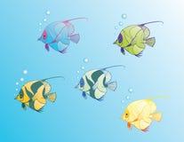 fishes2 μαγικός Στοκ Εικόνες