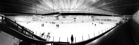 Fisheye-Ansicht eines Hockeys lizenzfreie stockfotografie