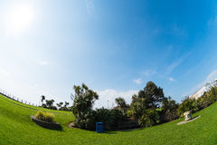 Fisheye Garden. View of Eastbourne gardens with bench and liter from a fisheye lens on a sunny day with blue sky - Sussex UK (05/2016 Royalty Free Stock Image