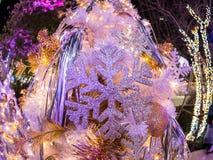 Fisheye len выставки новый аспект острословия украшения рождества Стоковые Изображения