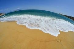 Fisheye seascape, snady beach Royalty Free Stock Images