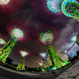 Fisheye Shot of Illuminated Towers at Garden by the Bay in Singa Royalty Free Stock Photography