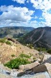 Fisheye sikt av dalen nedanför den Beartooth huvudvägen i Montana royaltyfri bild