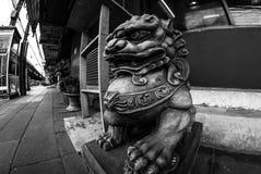 Fisheye sikt av det Fu lejonet/hunden eller kinesförmyndarelejon/hund, Bangkok Arkivfoton