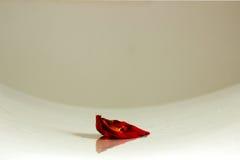 Fisheye skott av ett rött roskronblad på tabellbakgrunden arkivbild