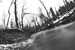 fisheye strumień Obraz Stock