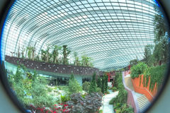Fisheye view of Gardens by the Bay, Singapore. Fisheye view of the Flower Dome, Gardens by the Bay, Singapore Royalty Free Stock Photography