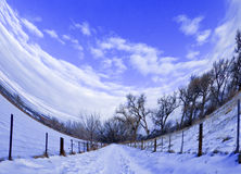 Fisheye View of a Snowy Path with Purple Tint Stock Images