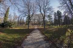 Fisheye 180 view of a space in the Retiro Park in Madrid city. Fish eye view 180 of a space with trees of the Retiro Park in Madrid city, Spain Royalty Free Stock Image