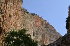 Fisheye widok na Avakas wąwozie z stromymi skałami i rzece na dnie Akamas, Cypr obrazy stock