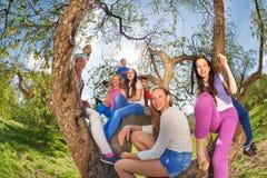 Fisheye widok uśmiechnięci nastolatkowie siedzi na drzewie obrazy stock