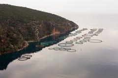 Fishfarm in mare aperto del mare aperto Fotografie Stock