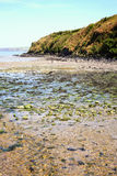 Fishguard Bay, Pembrokeshire, Wales Stock Images