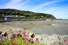 Fishguard Bay Stock Image