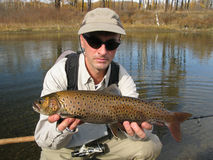 Fishing. (Fisherman catched big trout Royalty Free Stock Photos
