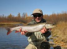 Fishing. (Fisherman catched taimen fish in Mongolia Royalty Free Stock Image