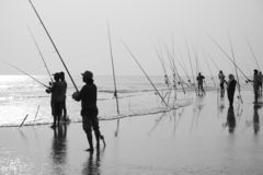 Fishing. On the coast of South China Sea in Malaysia Royalty Free Stock Images