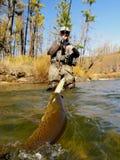 Fishing. Fisherman catch big trout Royalty Free Stock Image