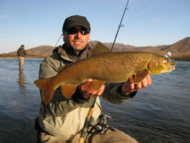 Fishing. Fisherman catched big lenok trout on Siberia Stock Photography