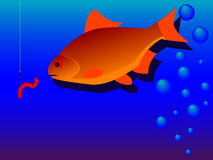 Fishing. A fish floats to a bait in a vector Royalty Free Stock Photography