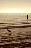 Fishing. Man and heron fishing in the ocean at sunset Stock Photo
