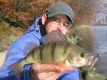 Fishing. Fisherman with perch on lake Royalty Free Stock Image