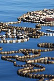 Fishing. Networks on Atlantic Ocean Stock Image