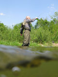 Fishing. Fly fishing on small creek Royalty Free Stock Image