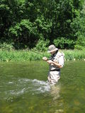 Fishing. Fly fishing in summer river Stock Photography