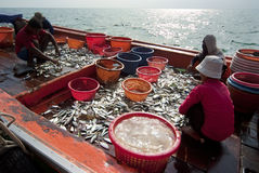 Fishing activities at the mouth of Mae Klong River, Thailand Stock Photos
