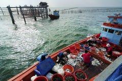Fishing activities at the mouth of Mae Klong River, Thailand Royalty Free Stock Photos