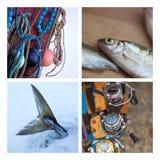 Fishing ambiance Stock Photography