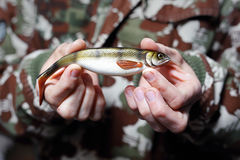 Fishing. Angler holds a bait on his hand royalty free stock photography