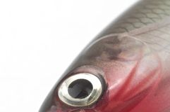 Fishing bait. Close-up of a fishing bait Royalty Free Stock Photo