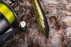 Fishing bait wobbler and reel with line on birch Stock Photos