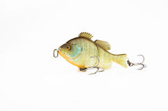 Fishing baits and gear for catching predatory fish. Located on a white background Stock Photography