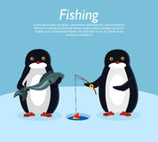 Fishing Banner. Penguin Animals on Fish. Vector. Fishing banner. Penguin animals on fish. Penguin holds fishing rod over hole in ice. Penguin with fresh fish Stock Images