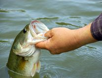 Fishing for bass Royalty Free Stock Photo
