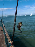 Fishing at the bay. Fishing rods at the San Francisco Bay with sailboats heeling blue sky with small white clouds green water Stock Photo
