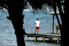 Fishing in belize. Scenic image of belize central america Royalty Free Stock Photo