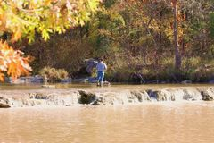 Fishing in the Blue River in Fall. A man, trout fishing just above a small sparkling waterfall in the Blue River, with fall foliage royalty free stock photo