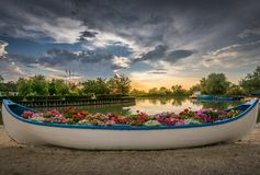 Boat filled with flowers in an iconic beautiful sunset landscape over the Danube Delta in Gura Portitei, Romania. Fishing boar filled with flowers as decoration royalty free stock images