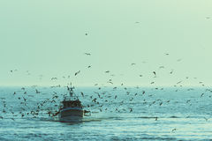 Free Fishing Boat Royalty Free Stock Image - 26611316